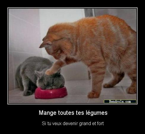 mange-legume-drole-1313336292