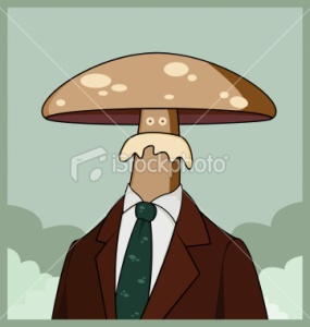 stock-illustration-9505073-mushroom-head